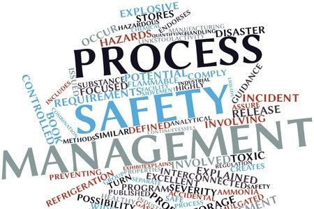 Health, Safety, Environmental & Security